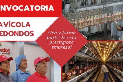 empleos avícola redondos